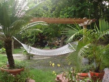 Rope Hammock Backyard