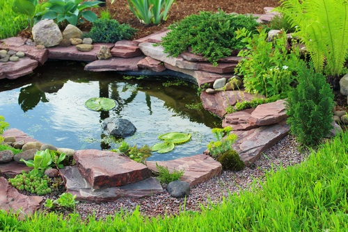 How To Make A Backyard Pond Exterior Bliss