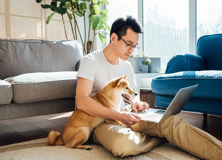 Man with dog looking at laptop